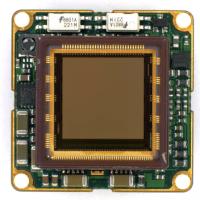 Ximea xiQ USB3.0 MQ042CG-CM-BRD